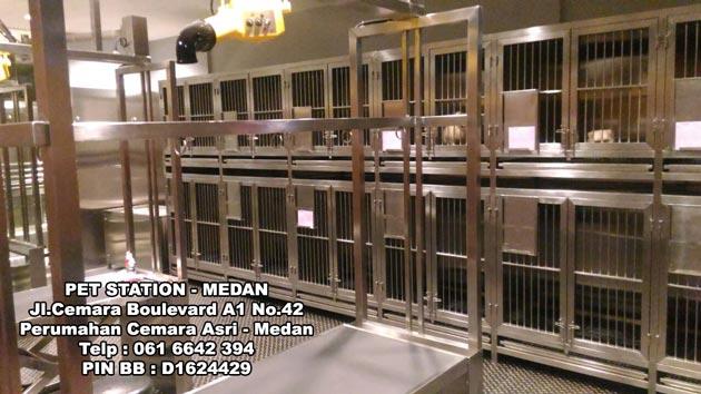 Pet Station Hadir Di Medan Pet Shop Anjingkita Com
