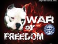 WAR OF FREEDOM ABKC & APBT Event