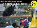 The Indonesia Agility Club Chapter DKI Jaya