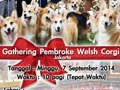 Corgi Lovers Gathering @Pet Sta