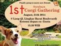 Surabaya 1st Corgi Gathering