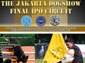 Final IPO Circuit