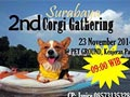 Surabaya 2nd Corgi Gathering