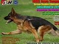 Pameran Anjing Herder Jateng & DIY