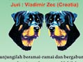 Pameran Anjing Rottweiler Jawa Timur 2015
